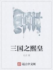 三国之熙皇最新章节