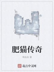 肥猫传奇热门推荐小说